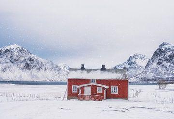 Das einsame rote Haus im Schneegestöber - Lofoten im Winter von Rolf Schnepp
