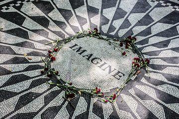 Symbole de paix des champs de fraises de New York sur Eric van Nieuwland