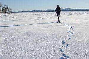 Winterwandeling op bevroren meer in Zweeds Lapland