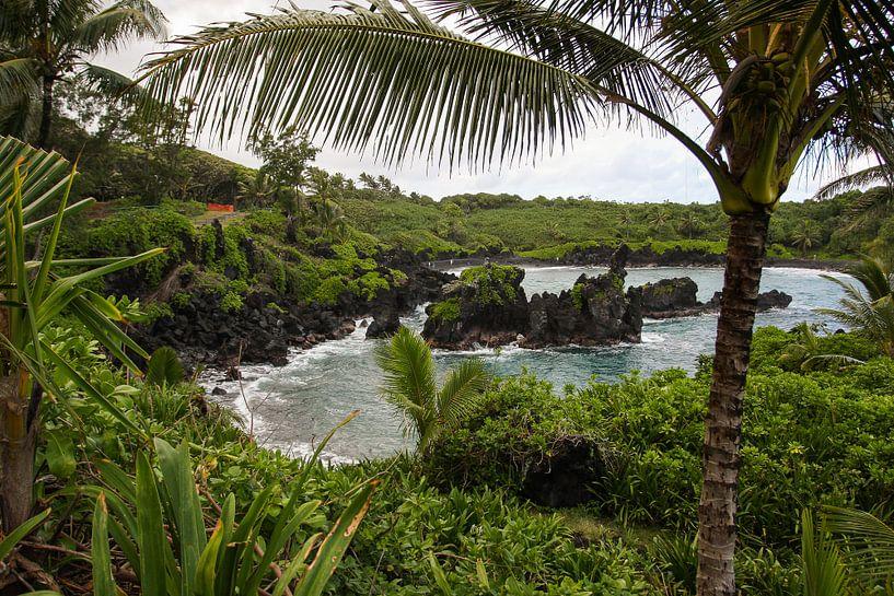 Tropische baai op Maui van Louise Poortvliet