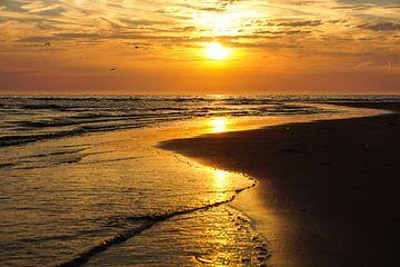 This is the Sea sur Dirk van Egmond