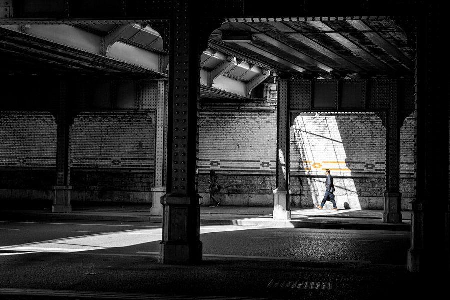 In the spotlight van Sander van der Werf