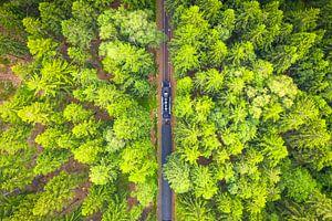 Stoomtrein in het Bos (Brockenbahn) van dron inger
