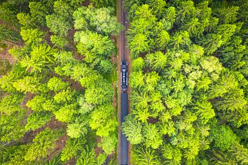 Stoomtrein in het Bos (Brockenbahn) van Droninger