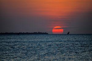 Zonsondergang  Pemba eiland in Tanzania van olaf groeneweg