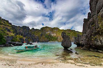 Tropisch paradijs van Antwan Janssen