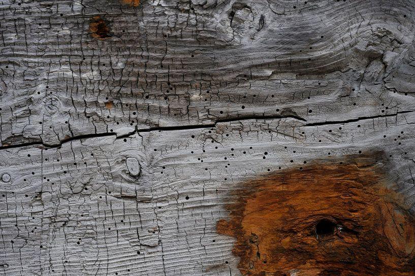 Old Wood Bryggen V van Cor Ritmeester