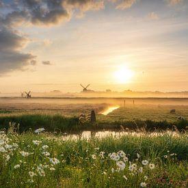 Die Niederlande von Reinier Snijders