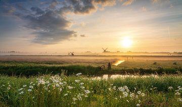 Nederland van Reinier Snijders
