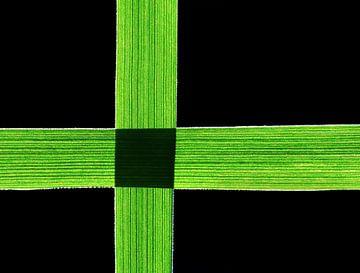 Gras-Art van Caroline Lichthart