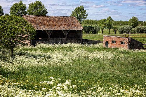 Boerenschuur, Maasbommel von