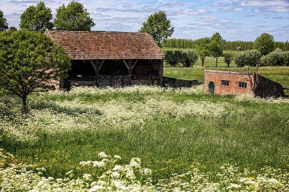 Boerenschuur, Maasbommel van Ab Wubben