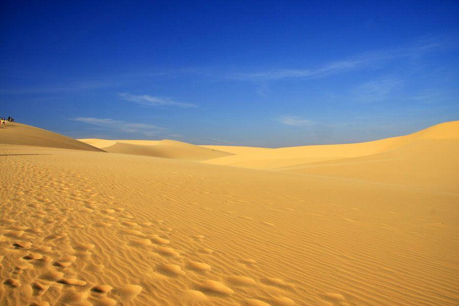 Vietnamese duinen van Loraine van der Sande