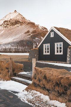 Holzhaus mit Gras auf dem Dach bei Sonnenaufgang in Arnarstapi, Island von Michiel Dros
