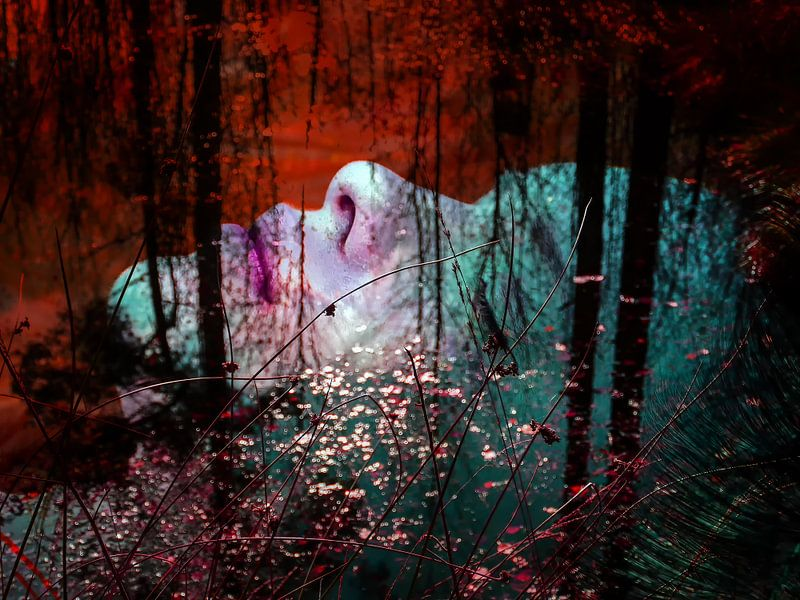 Sleeping in the autumn van Gabi Hampe