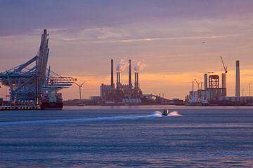 Sunset Maasvlakte
