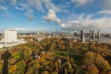 Le parc Euromast à Rotterdam aux couleurs de l'automne sur MS Fotografie | Marc van der Stelt