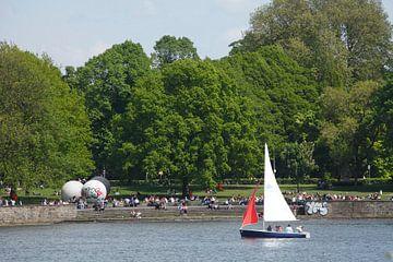Zeilboot, gazon bij de Aasee , Münster in Westfalen, Noordrijn-Westfalen, Duitsland, Europa van Torsten Krüger