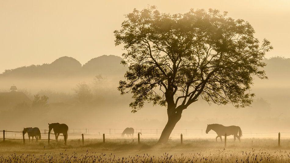 Paarden in de mist - 2 van Richard Guijt