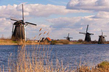 Kinderdijk Holland van Brian Morgan