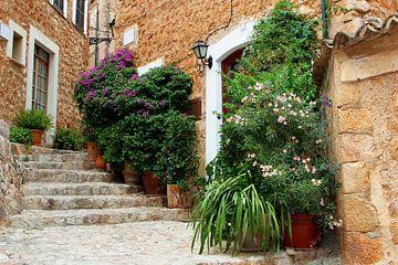 Das schönste Dorf in Spanien von Inge Hogenbijl
