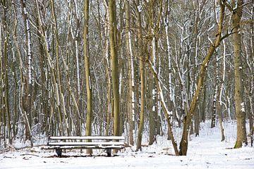 Bank im Wald im Schnee von Barbara Brolsma