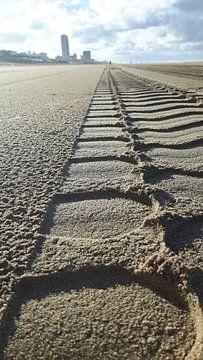 Wielspoor in het zand van Chantal Koper