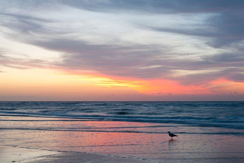 Zonsondergang in Westende - België van Tamara Witjes
