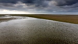 Waddenzee, Friesland. Nederland 2014. van