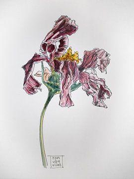 Tote Blumen 2 von Ron van Vliet