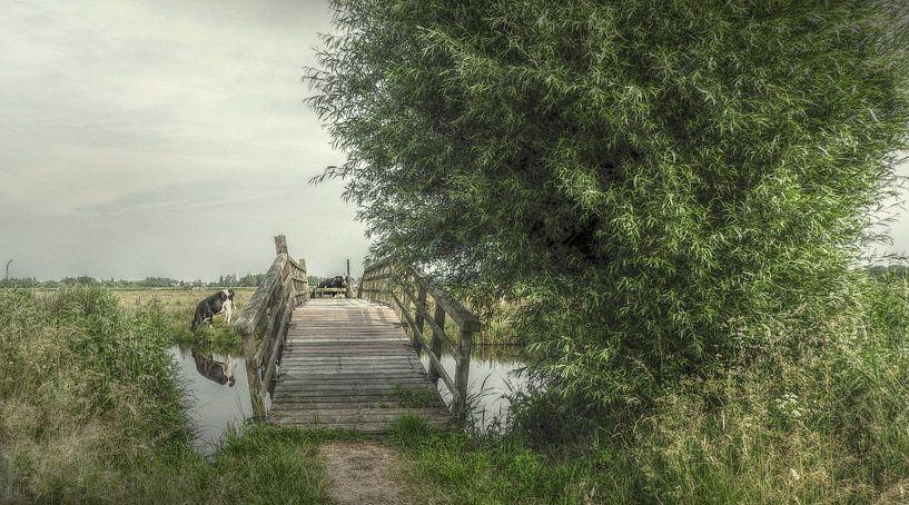 Hollandse Landschappen van Annelies Schreuder