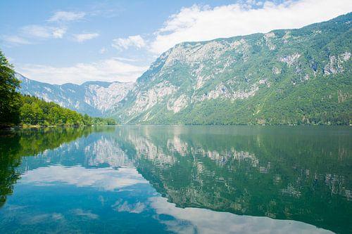 Het meer van Bohinj in Slovenie