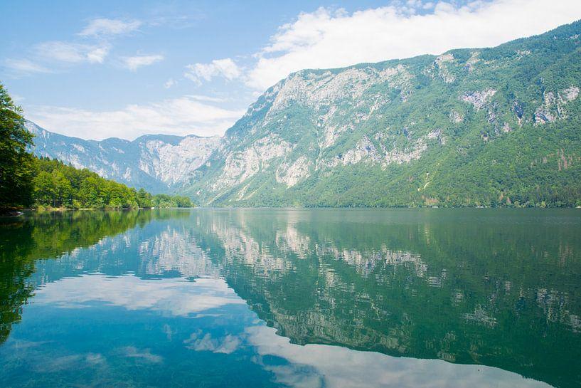 Het meer van Bohinj in Slovenie van Lifelicious