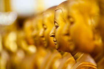 Boeddha van Marcel Derweduwen