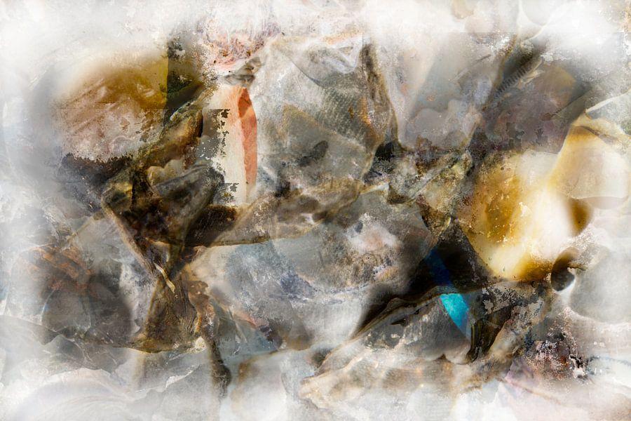 oysters van Gerard Wielenga