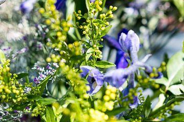 Wildblumenstrauss mit gelb-grün-violetten Farben von Idema Media