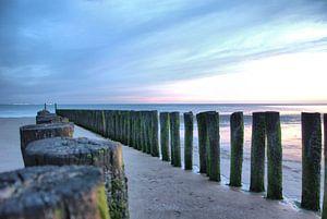 Paalhoofden aan de Zeeuwse kust