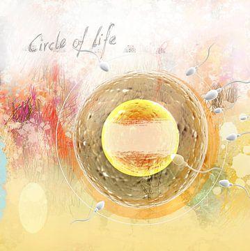 the circle of life van Dray van Beeck