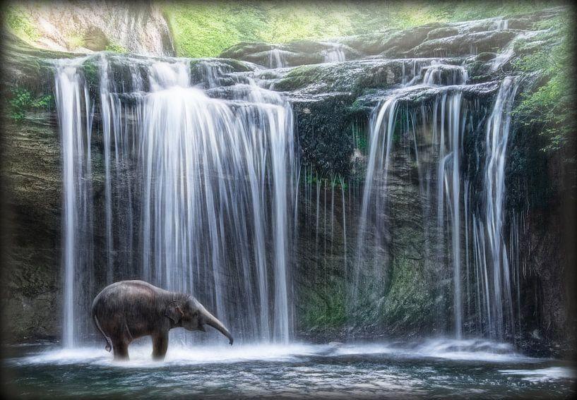 Olifant in waterval van Marcel van Balken
