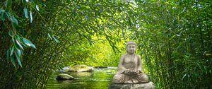 buddha im bambus wald von Dörte Stiller