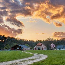 Gouden boerderij van Harro Jansz
