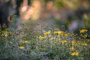 bloemen part 18 van Tania Perneel