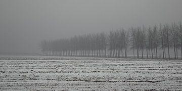 mist in de polder van Annie Keizer