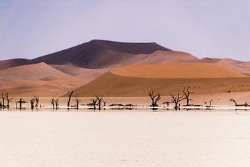 Rode zandduinen in Namibië sur