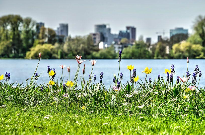 De lente, de Plas en de skyline van Frans Blok