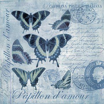 Schmetterlings-Nostalgie von Andrea Haase