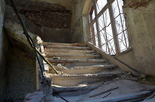 Downstairs... van