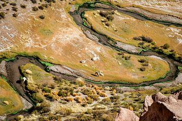 altiplano van Stefan Havadi-Nagy