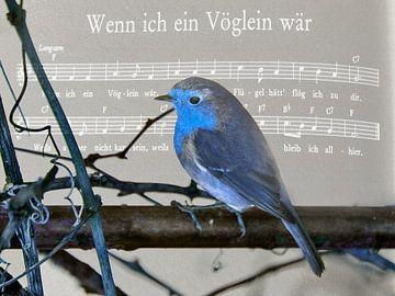 Als ik een vogel .... van Christine Nöhmeier