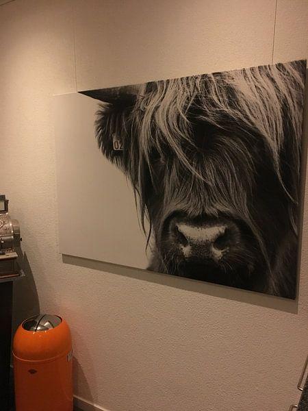 Klantfoto: Portret Schotse Hooglander zwart-wit van Sandra van Kampen